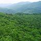 松峰山自然保护区