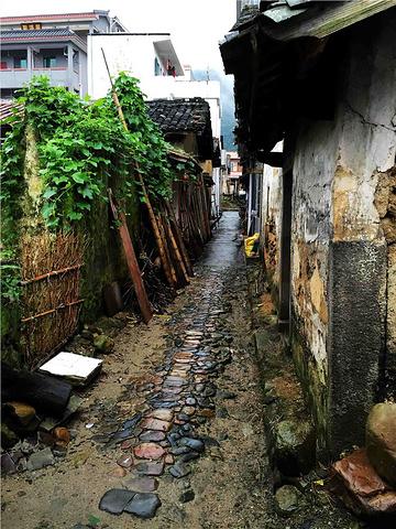 """""""...污染的清新空气,喝上天然甘甜的山泉水,从树上采摘的新鲜水果,这里还有""""长寿村""""、""""美女村""""之称_溪头村""""的评论图片"""