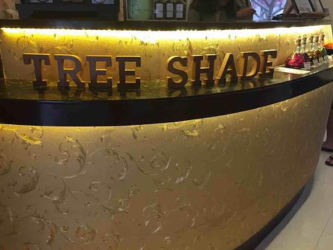 Tree Shade旅游景点攻略图