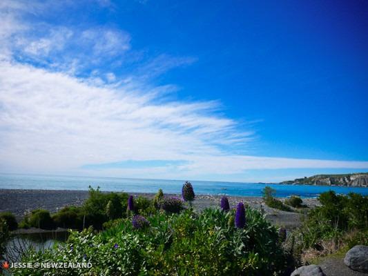 爱在天堂路上—新西兰甜蜜之旅