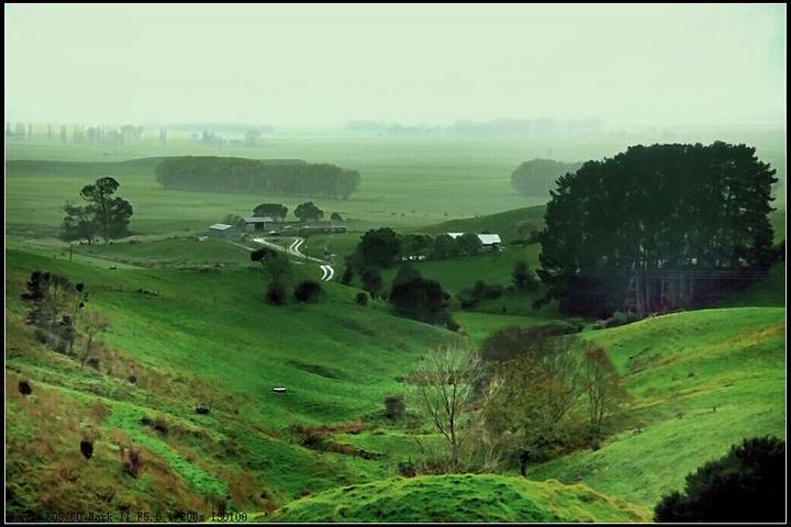 """""""新西兰北岛的一个盛产奶牛的著名小镇。也是..._玛塔玛塔""""的评论图片"""