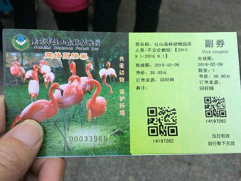 南京红山森林动物园旅游景点攻略图