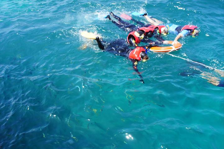 """""""只能用最笨的方法看海下_大堡礁""""的评论图片"""