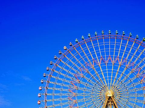 天保山摩天轮旅游景点图片