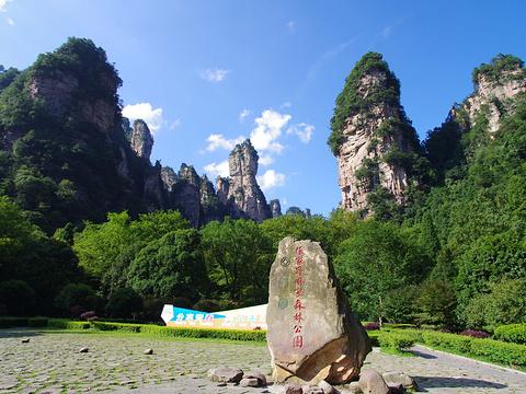 张家界国家森林公园旅游景点图片