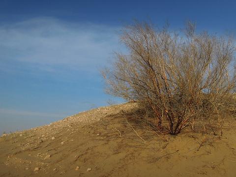 黄沙古渡原生态旅游区旅游景点图片