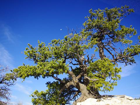 海峡群岛国家公园旅游景点图片