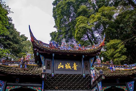 青城山的图片