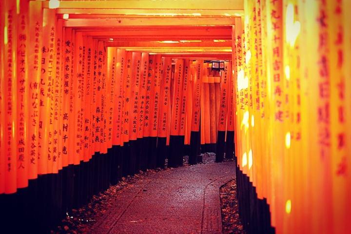 """""""看到满山的千本鸟居,是非常震撼的,有种没有来错的感觉,给32个赞,来到京都值得推荐的一个景点_伏见稻荷大社""""的评论图片"""