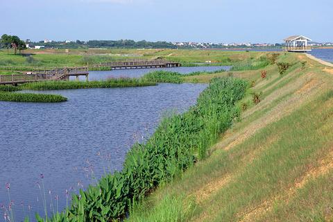鄱阳湖国家湿地公园的图片
