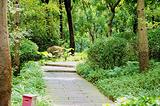 马鞍山森林公园