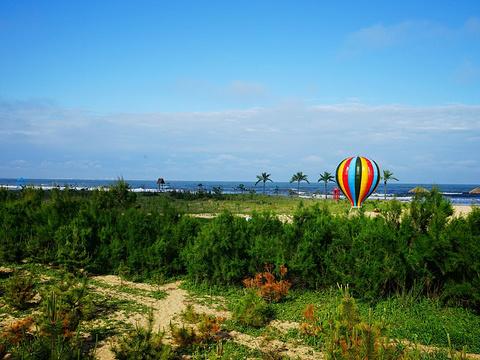 日照海滨国家森林公园旅游景点图片