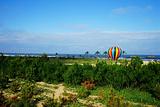 日照海滨国家森林公园
