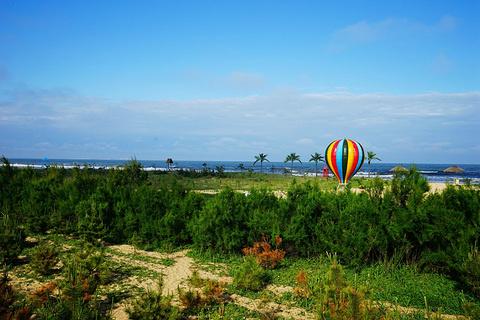 日照海滨国家森林公园的图片