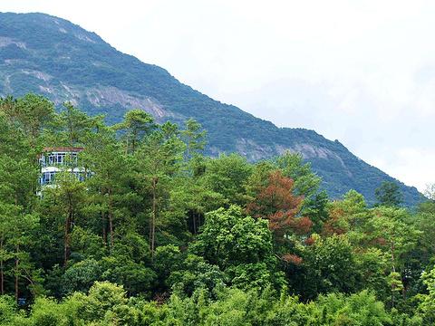 黄龙湖森林公园旅游景点图片