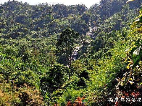 海鼎百花岭雨林文化旅游区旅游景点图片