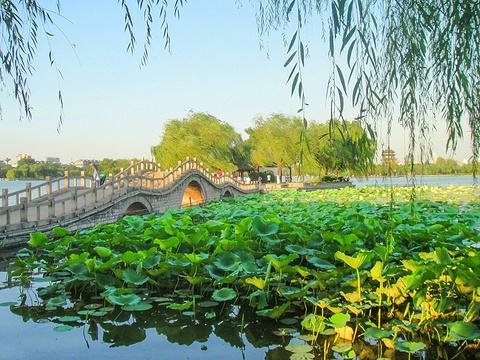 大明湖景区旅游景点图片