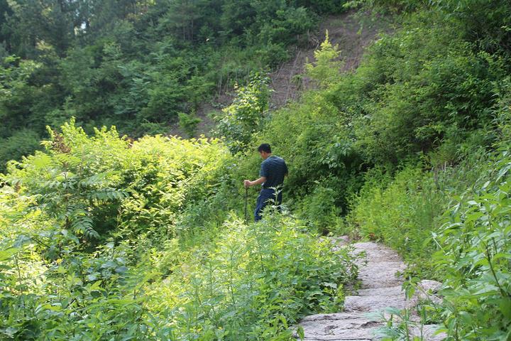 """""""... 登山 成功 ,大家 都累的 够呛 ,腿肚子都 打哆嗦 ,不过 都非常有成就感 ,感觉 值得 _佛手山国家森林公园""""的评论图片"""