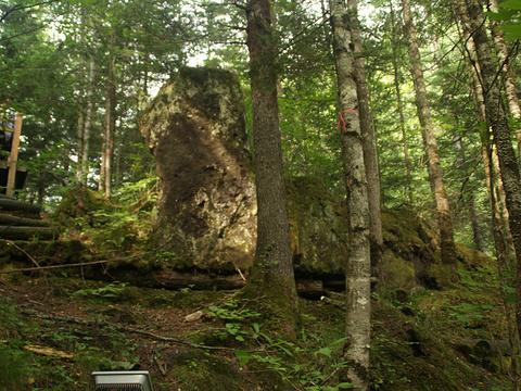 峡谷浮石林旅游景点图片