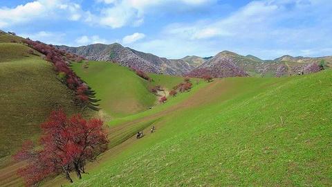 杏花沟旅游景点攻略图