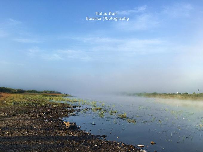 临江/老鹰嘴 /太平/ 莫尔道嘎国家森林公园/ 驯鹿园/根河图片