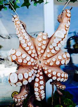 章鱼餐厅旅游景点攻略图