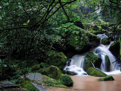 碧峰峡旅游景点图片