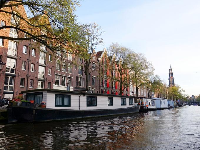 鹿特丹图片