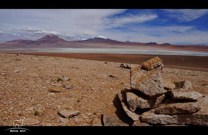 爱德阿都·阿瓦罗·安第斯动物群国家保护区图片