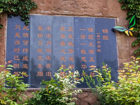 沂水蝴蝶谷旅游景点图片