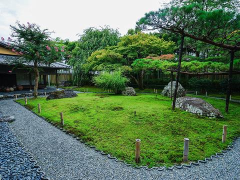 嵯峨野旅游景点图片