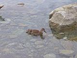 库克山国家公园旅游景点攻略图片