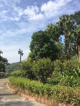 九龙湖高尔夫球会旅游景点攻略图