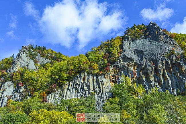 大雪山国立公园图片