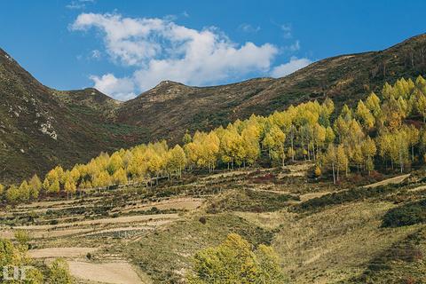 察汗河森林公园