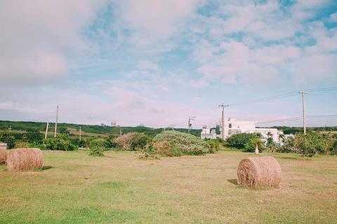 埔顶大草原