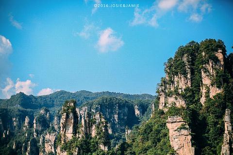 天子山的图片