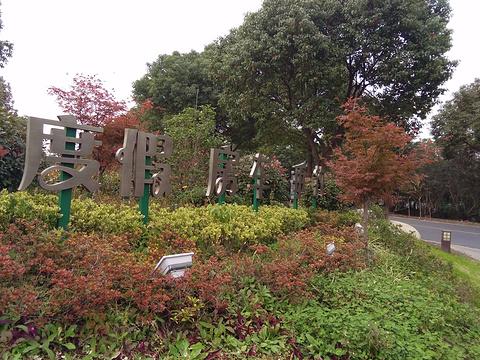 崇明岛国家地质公园旅游景点图片