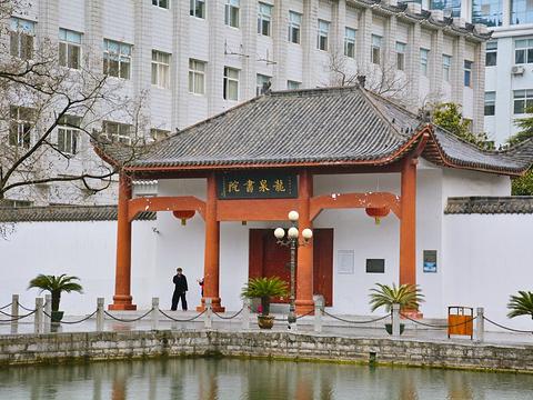 龙泉公园旅游景点图片