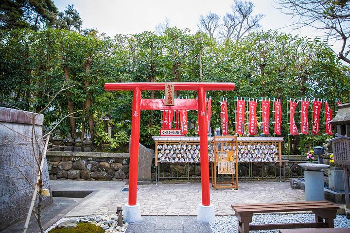 """""""长谷寺是与其他在城市中的寺庙神殿有所不同,它有着背山临海的绝佳地理位置。枫叶落尽、樱花尚早,    _长谷寺""""的评论图片"""