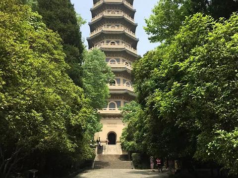 灵谷塔旅游景点图片