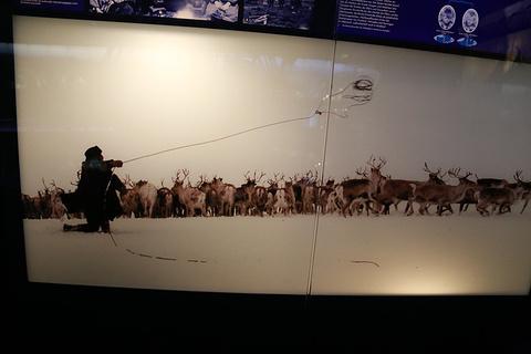 萨米博物馆旅游景点攻略图