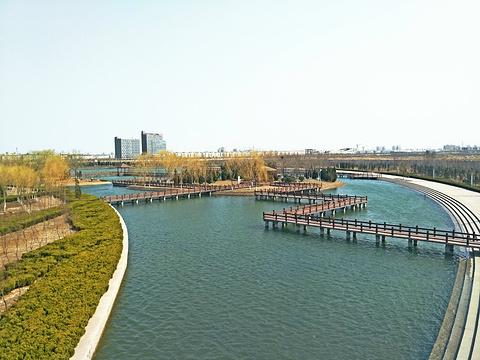 黄河文化公园旅游景点图片