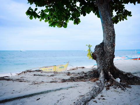 妈妈拍丝瓜岛旅游景点图片