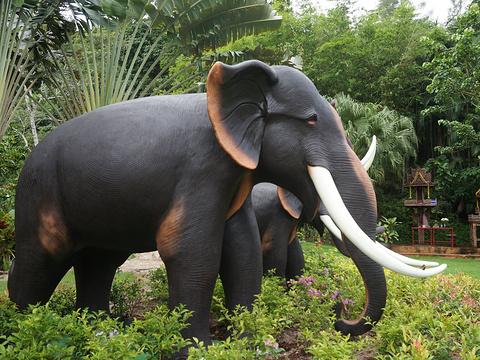 Phuket Safari ECO+旅游景点图片