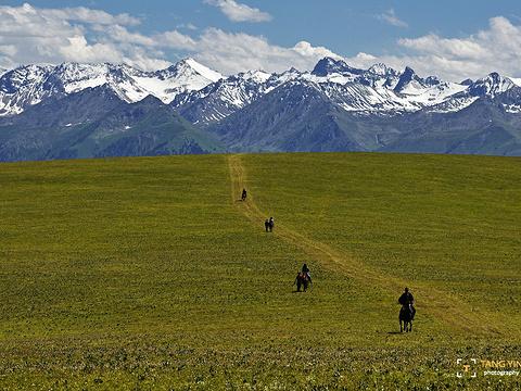 喀拉峻草原旅游景点图片