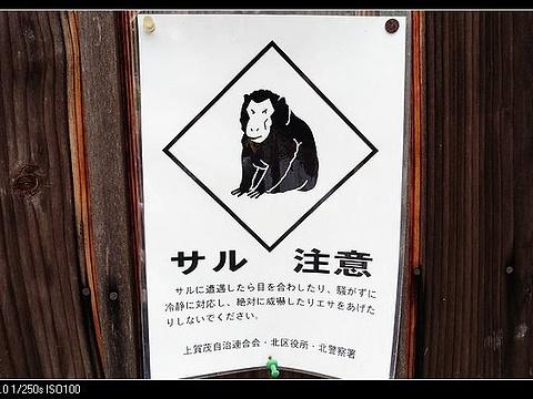 上贺茂神社旅游景点图片