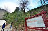 蟒山国家森林公园