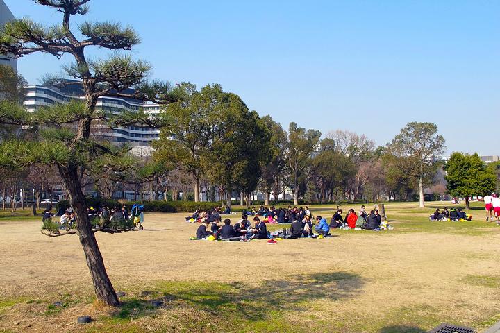 """""""大阪城公园郊游的日本小学生_大阪城公园""""的评论图片"""