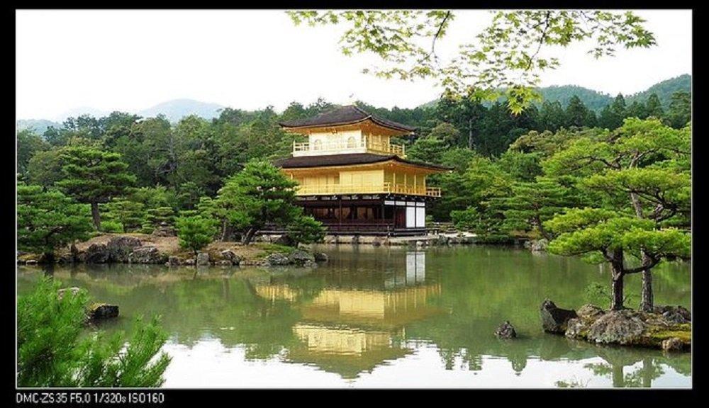 2015端午携父日本自助游